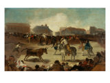 Bullfight in a Village