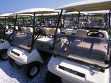 Fleet of Golf Carts Awaiting Avid Golfers  USA