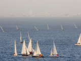 Sailboats Racing Cluster around a Windward Mark  San Francisco Bay  California