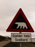 Polar Bear Crossing Sign in Svalbard  Norway  Svalbard  Norway