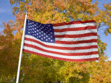 Old Glory Unfurls Against Autumn Colors  Waldorf  Maryland