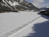 Cross Country Ski Marathon  St Moritz  Switzerland