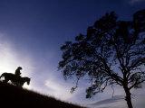 Silhouette of Cowboy  Picabo  Idaho