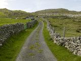 Country Road Lined with Stone Walls  Inishturk Island  County Mayo  Ireland