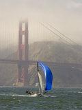 International 14 Skiff Sails under the Golden Gate Bridge  San Francisco Bay  California