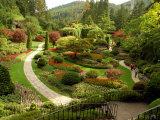 Sunken Garden at Butchart Gardnes  Victoria  British Columbia