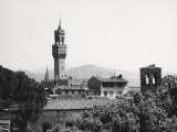 Florence from the Boboli Gardens