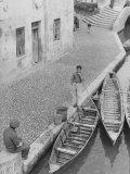 Boater in Comacchio