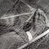 Feet in a Fishing Net