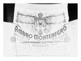 Billboard Advertising Amaro Montenegro  Produced by the Cobianchi Stanislao Distillery  Bologna