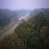Morning Mists in Rio Negro Region of Amazon Rainforest  Amazonas State  Brazil  South America