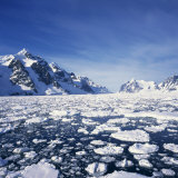 Loose Pack Ice in the Sea  with the Antarctic Peninsula in the Background  Antarctica