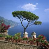 Garden of Villa Rufolo  Ravello  Amalfi Coast  UNESCO World Heritage Site  Campania  Italy  Europe