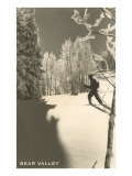 Cross Country Skier  Bear Valley
