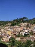 Bormes Les Mimosas  Provence  France  Europe