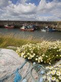 Helvick Head Pier  County Waterford  Munster  Republic of Ireland  Europe