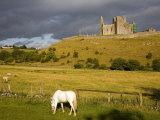Rock of Cashel  Cashel Town  County Tipperary  Munster  Republic of Ireland  Europe
