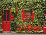Ivy Covered Cottage  Town of Borris  County Carlow  Leinster  Republic of Ireland  Europe