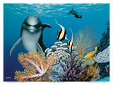 Coral Garden  Hawaiian Dolphin