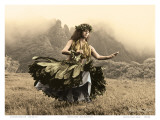 Swaying Skirt  Hawaiian Hula Dancer