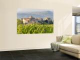 Vineyard and Village  Volpaia  Tuscany  Italy