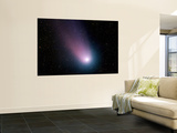 Comet C/2001 Q4 (NEAT)