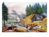 The Gold Rush  Gold Mining in California  1849  1871