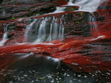 A Waterton creek bed gleams crimson from iron-rich rocks