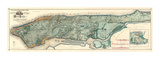 Sanitary and Topographical Map of the City and Island of New York  c1865