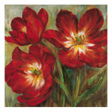 Flamenco Reds