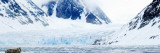Bearded Seal Resting on an Ice Floe, Spitsbergen, Svalbard Islands, Norway Papier Photo par Panoramic Images