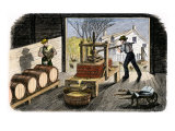 Farmers Pressing Apples to Make Cider, 1800s Giclée
