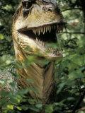 Model of Allosaurus Dinosaur at the National Zoo  Washington Dc