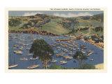Isthmus Harbor  Catalina  California