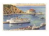 Steamers at Pier  Casino  Catalina  California
