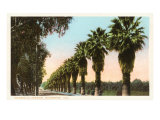 Magnolia Avenue  Riverside  California