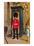 Buckingham Palace Guard  London  England