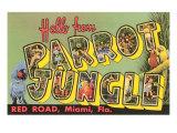 Hello from Parrot Jungle  Miami  Florida