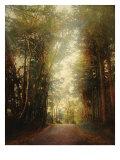 Road of Mysteries II
