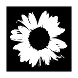 Black And White Abstract Daisy II Giclée premium par Ruth Palmer