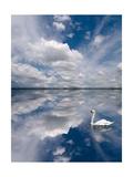 Swan Lake Explorations