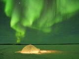 Igloo under Northern Lights  Northwest Territories  Canada March 2007