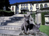 Two Russian Blue Cats Sunning on Garden Stone Steps  Italy