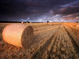 Round Straw Bales and Stormy Morning Sky  Near Bradworthy  Devon  Uk September 2008