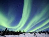 Northern Lights Northwest Territories  March 2008  Canada