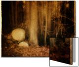 Ghostly Forest Landscape