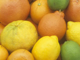 Citrus Fruits Grapefruit  Tangerine  Ugli  Orange  Lemon  Lime  Tangelo and Clementine