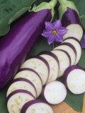 Eggplant  Neon