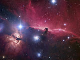 The Horsehead Nebula Region Papier Photo par Robert Gendler