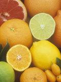Citrus Fruits: Grapefruit  Lemon  Lime  Tangerine  Tangelo  Orange  Clementine and Kumquat